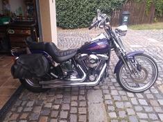 Harley Davidson FXSTS Softail Springer
